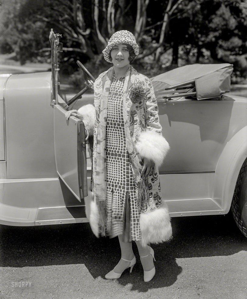 Ermine & Alligator: 1925