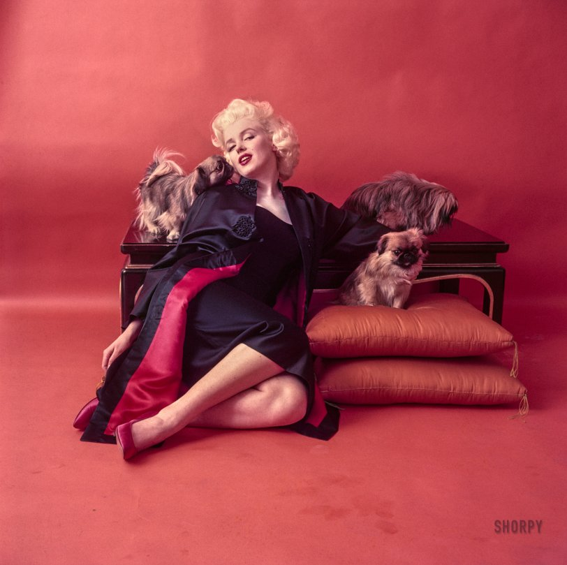 Red Marilyn: 1955