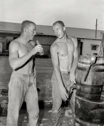Drinking Buddies: 1955