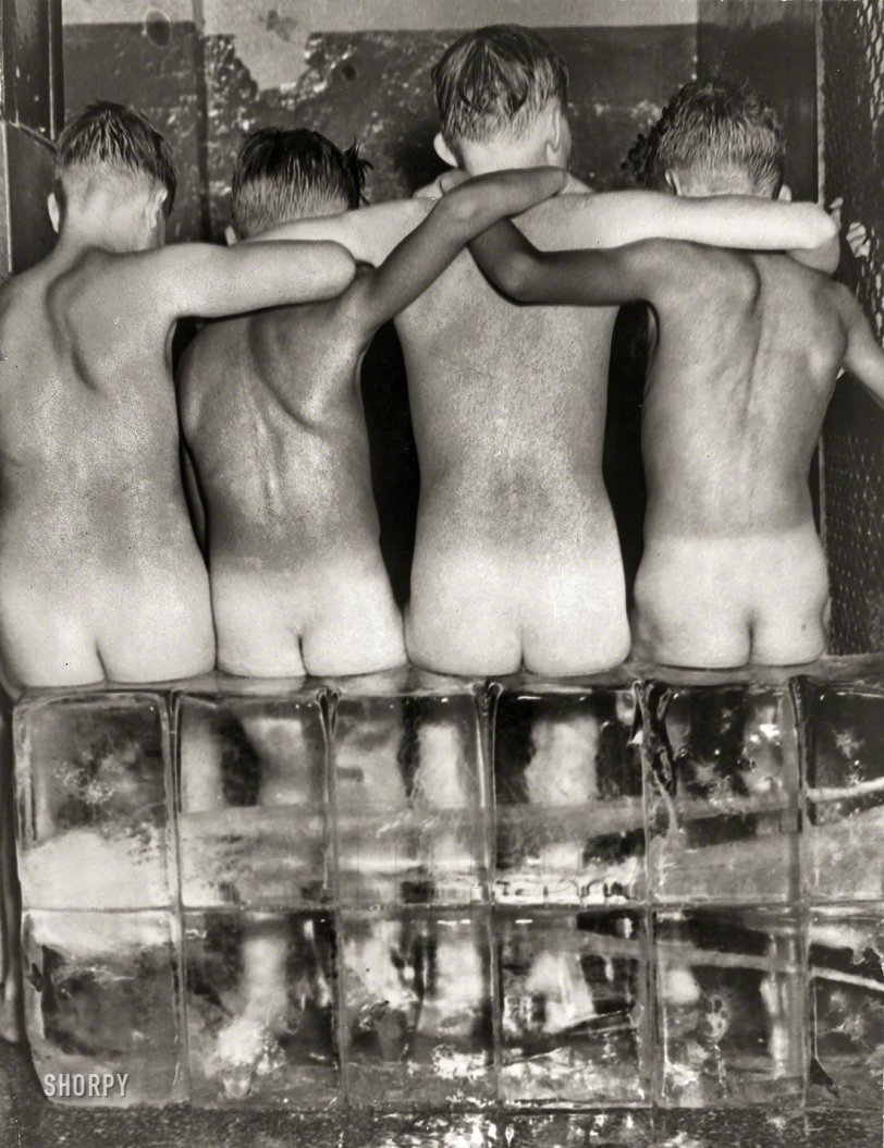 Polar Bare: 1950