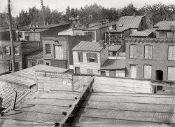 Grace Alley: 1901