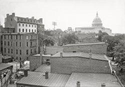 Rooftops of Washington: 1901