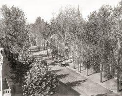 Seventh Street: 1901
