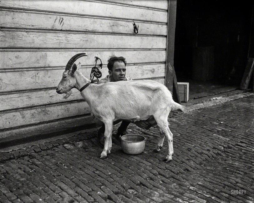 The Goat Whisperer: 1922