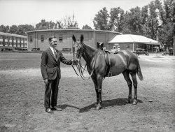 Gift Horse: 1925