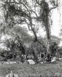 Our Eden: 1897