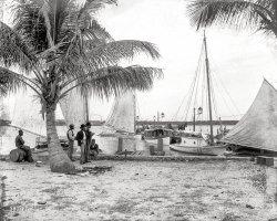 Palm Beach: 1897