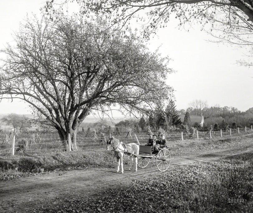 The Boys of Autumn: 1900