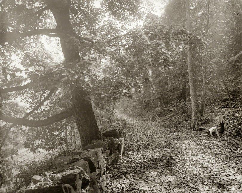 The Shortcut: 1900