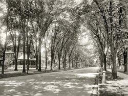 West Genesee: 1900