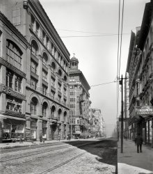 North From Olive: 1900