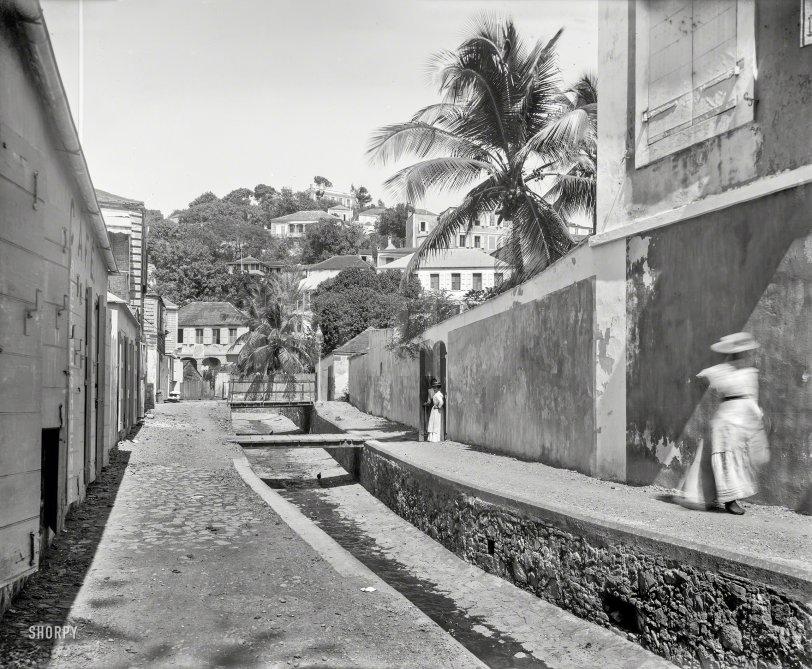 Tropic Café: 1901