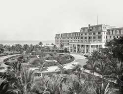 Termite Terrace: 1901
