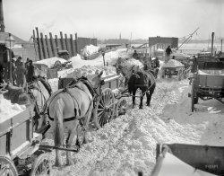 The Blizzard: 1899