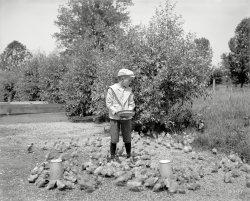 Duck Farm: 1900