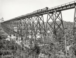 Long Train Running: 1900