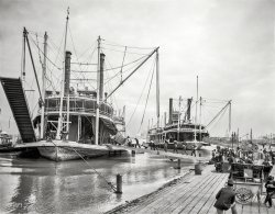 High Water: 1903