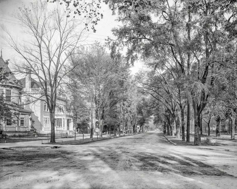 Greene Day: 1903