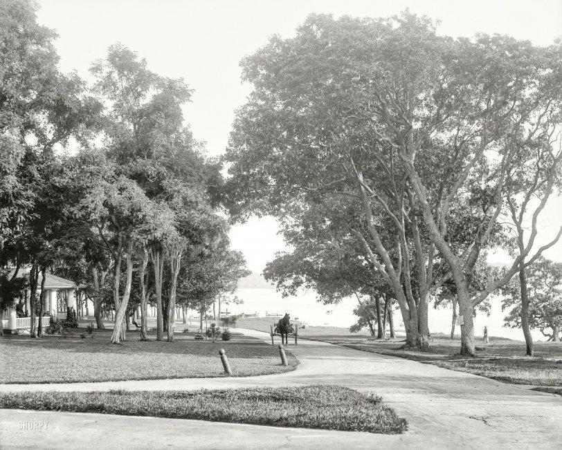 Idyllic Isle: 1904