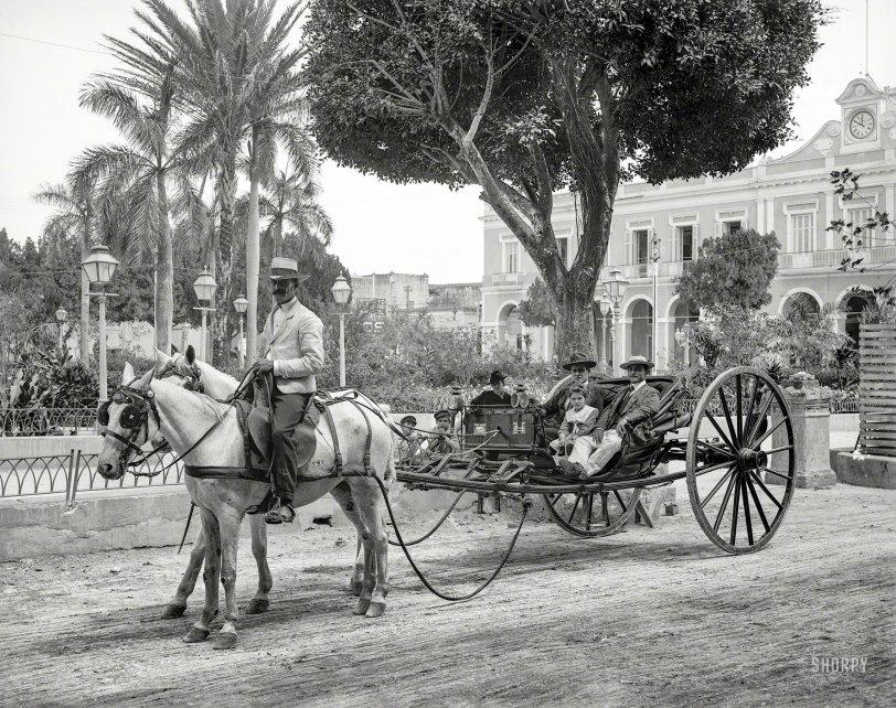 Havana Volanta: 1904