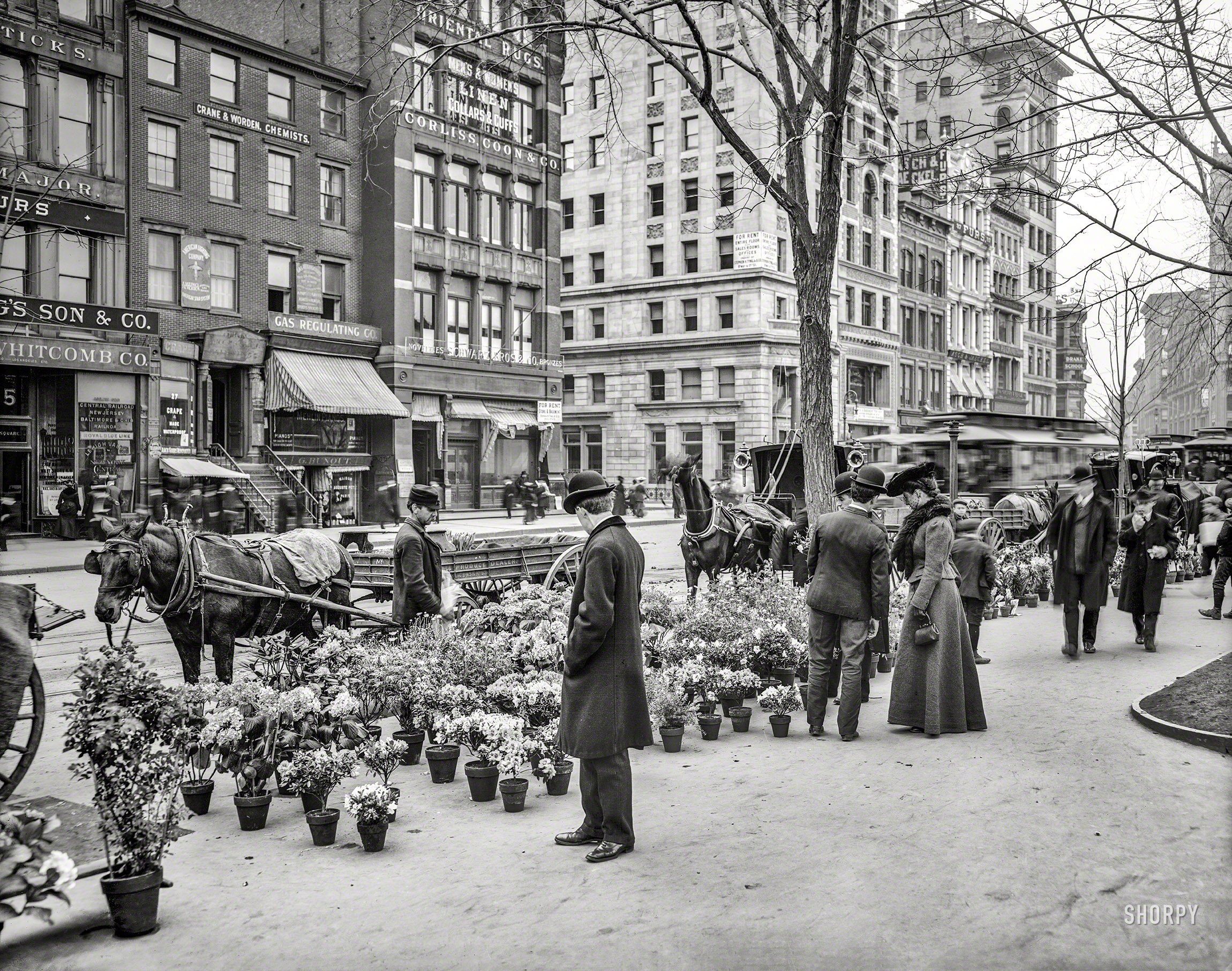 Shorpy historic picture archive easter in new york for Flowers union square nyc