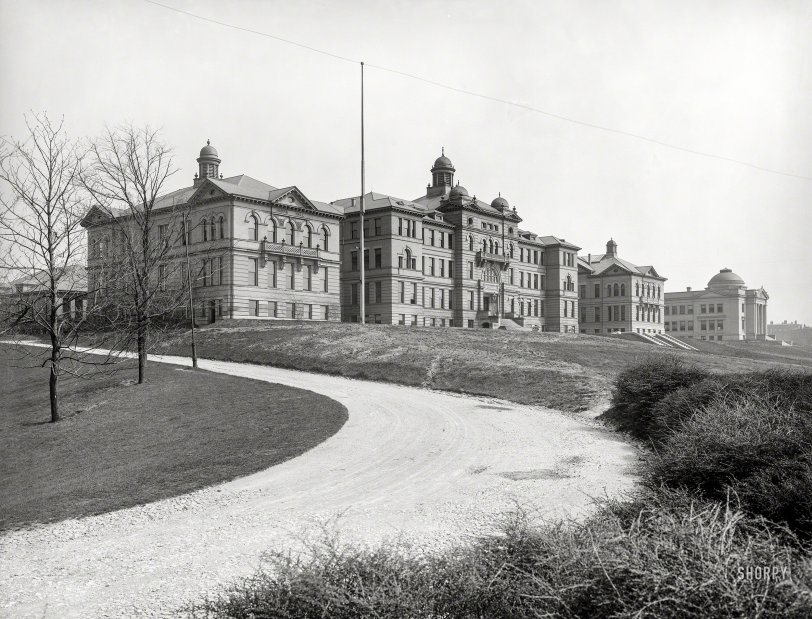 The Halls of Academe: 1904