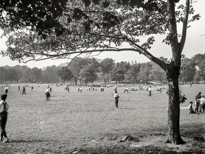 Field of Tweens: 1906