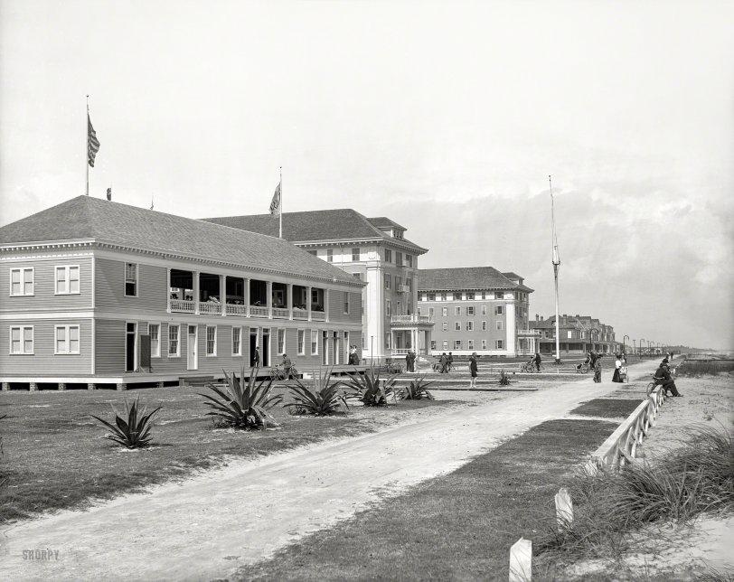 A Hot Property: 1904