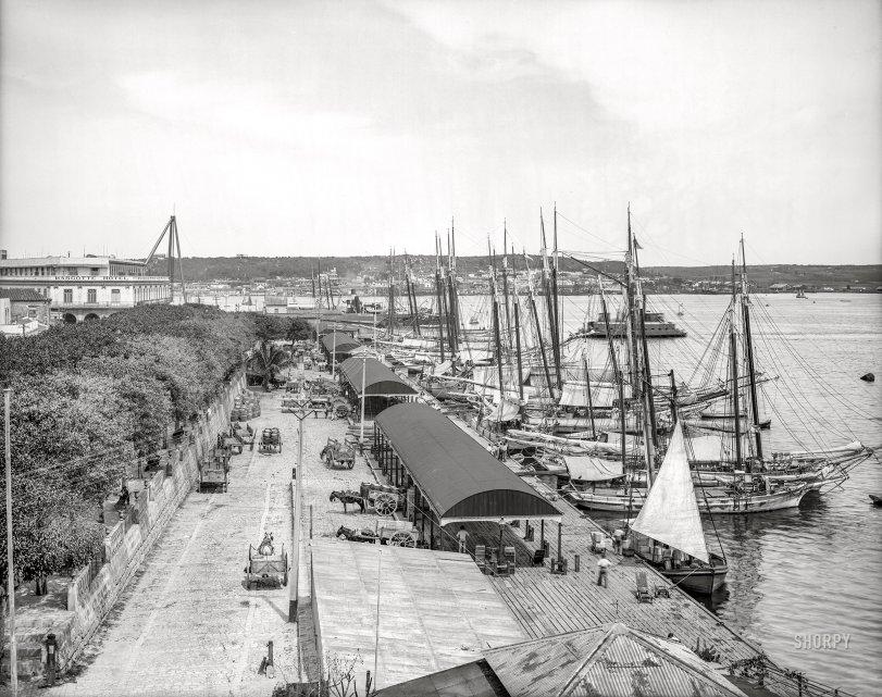 Muelle Paula: 1904