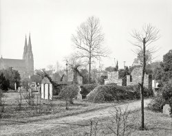 The Plot Thickets: 1904