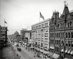 Urban Buffalo: 1904