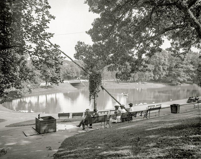Urban Oasis: 1905
