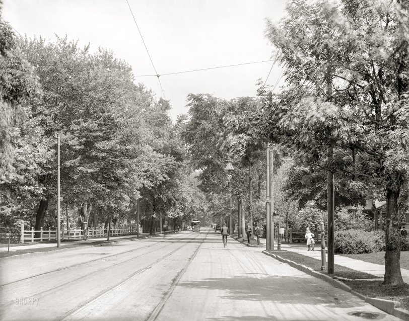 Idyllic Avenue: 1905