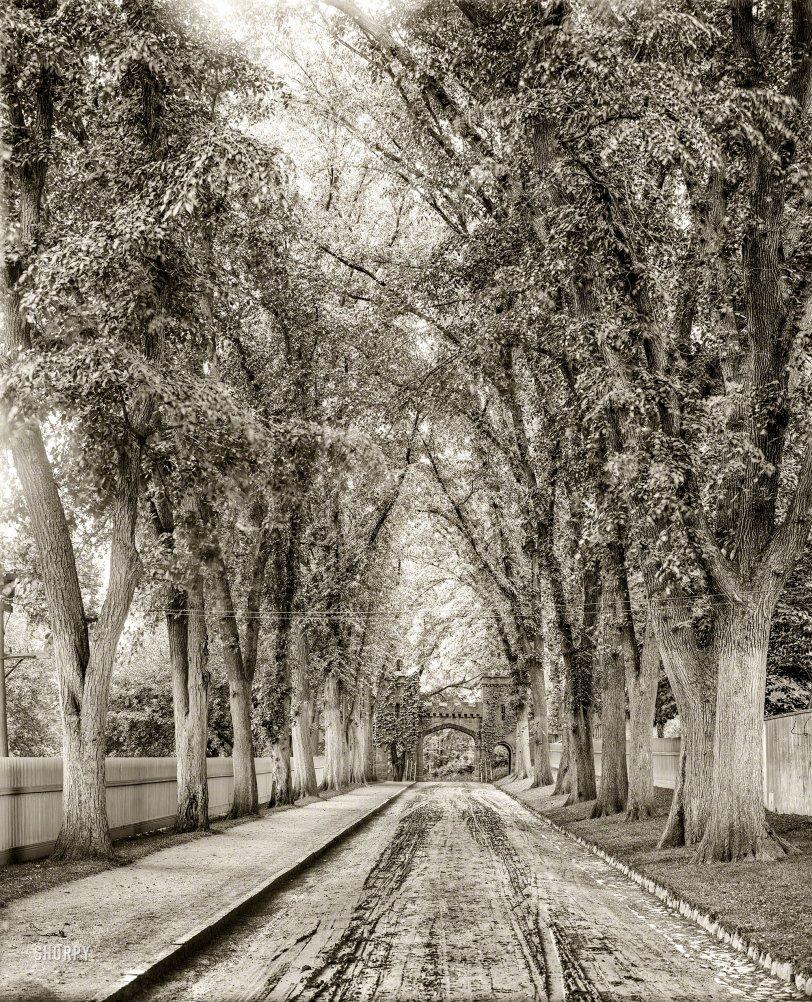 Dead End: 1905