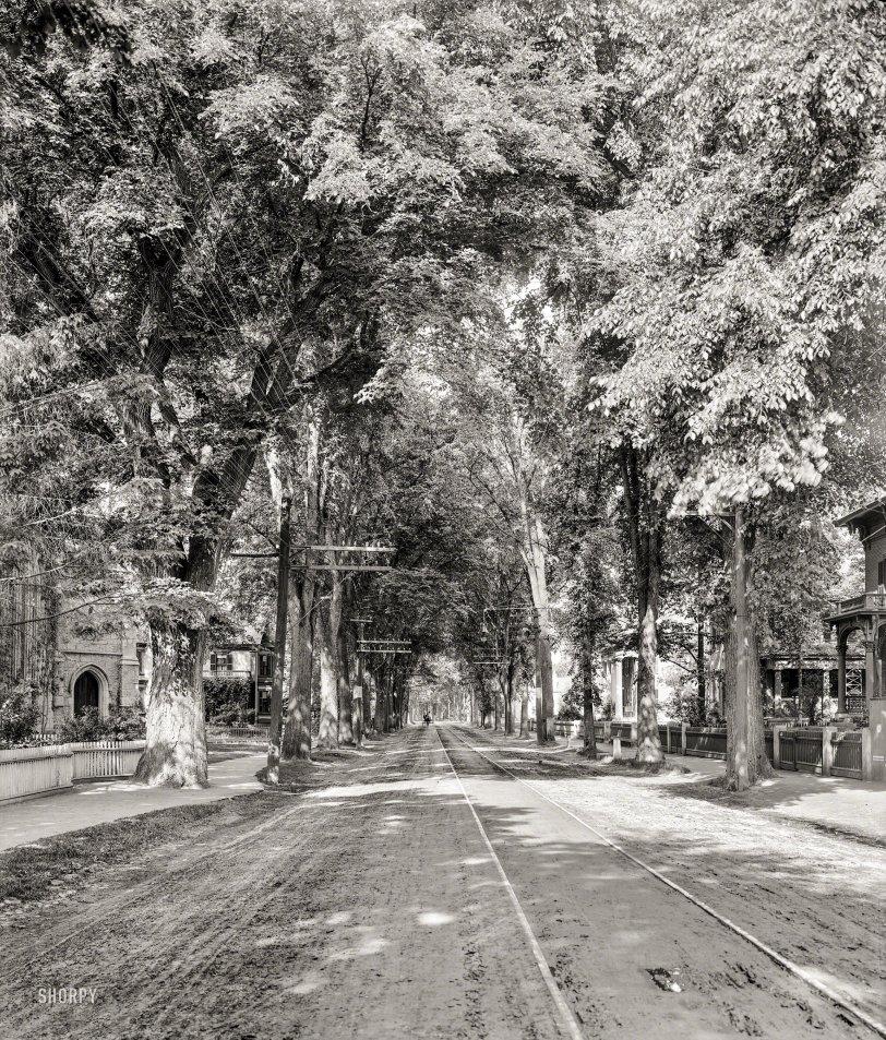 Leafy Keene: 1905