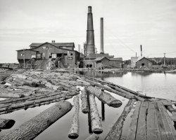 Dead River: 1905