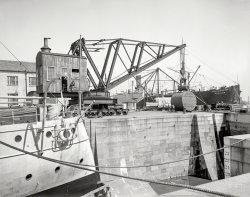 The Great Crane: 1905