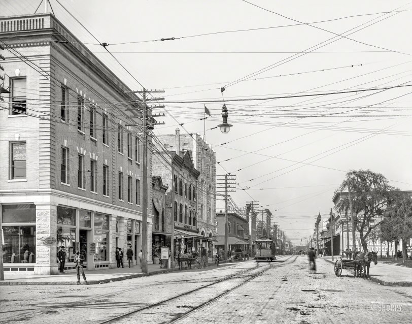 Old Tampa: 1905