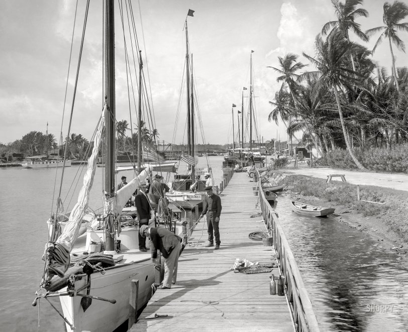 Masts Over Miami: 1905