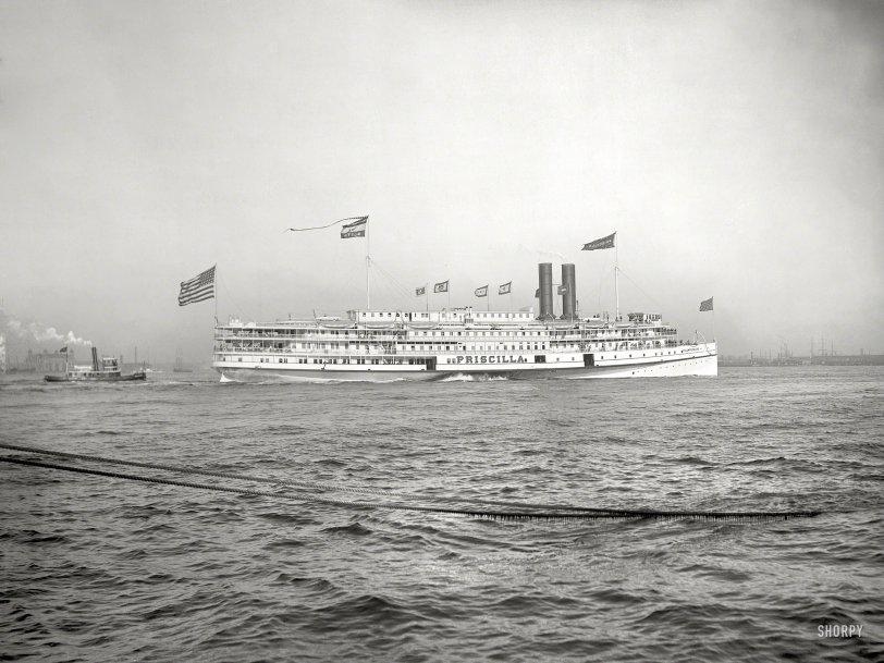 Priscilla: 1901