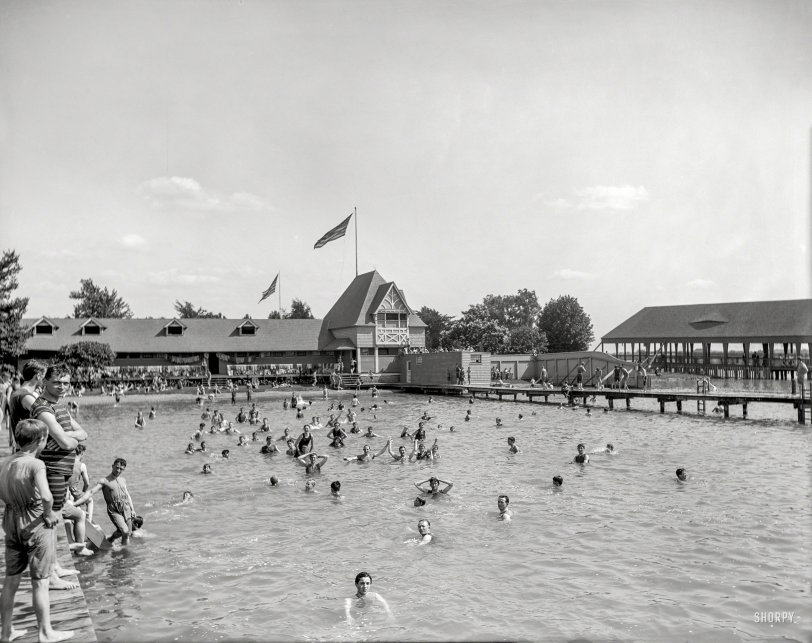Stag Swim: 1903