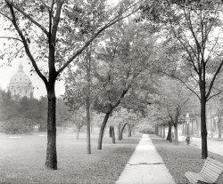 Coat Tree: 1910