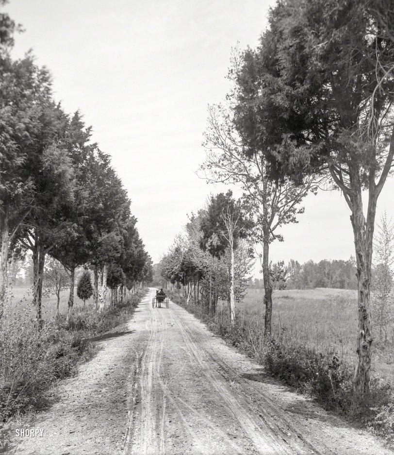Bridge Road: 1913