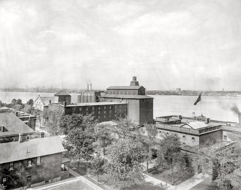The Malt House: 1900