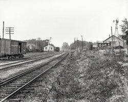 Near Normal: 1900