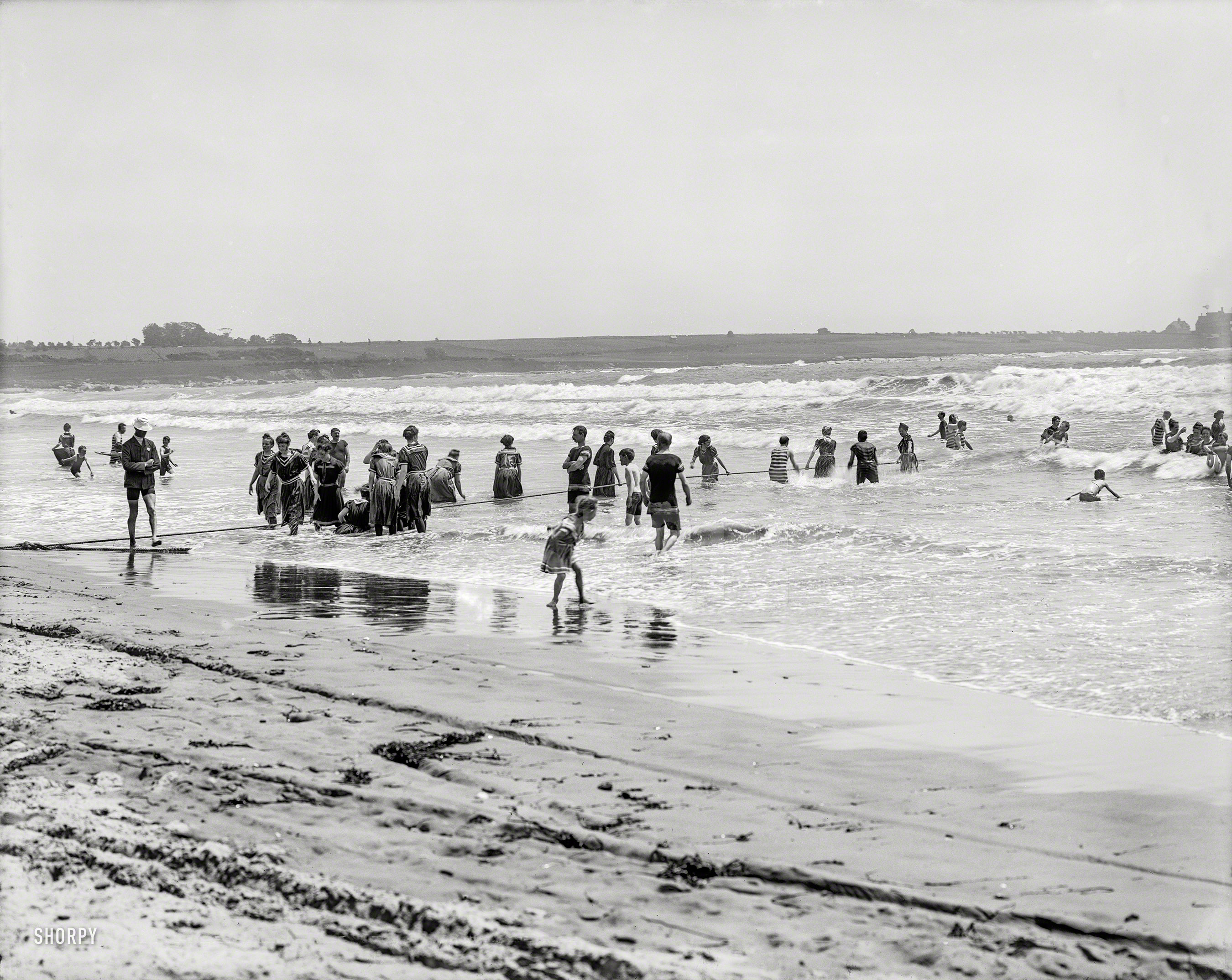 Shorpy Historical Picture Archive :: Beach Burro: 1905