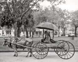 Power Steer: 1910