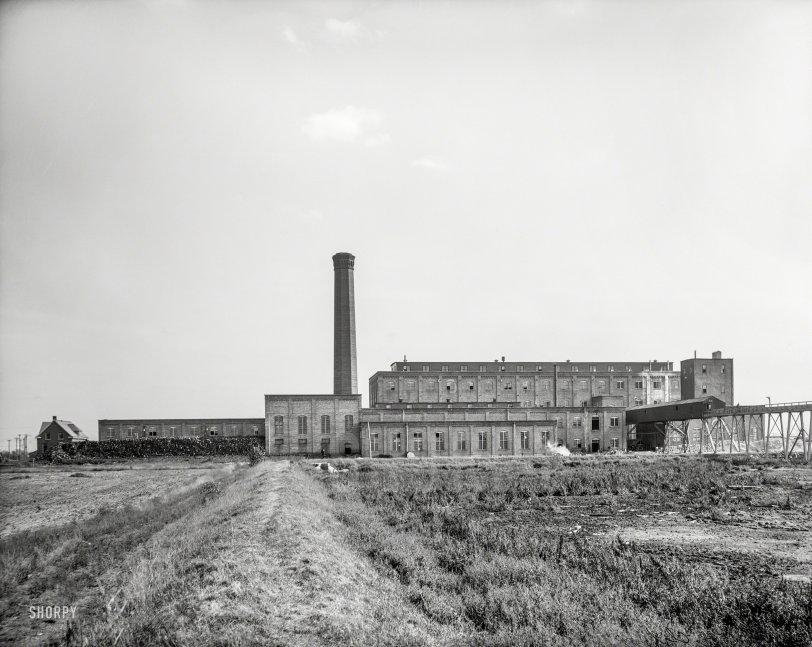 Michigan Sugar: 1908