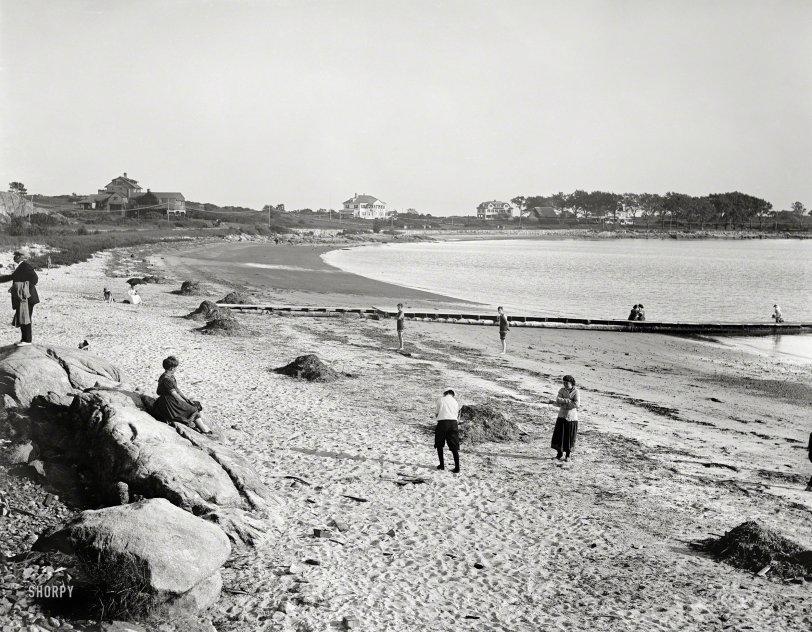 Shore Birds: 1910