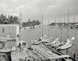 Miami River Mooring: 1910